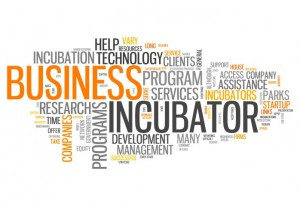 About the UCF Business Incubation Program
